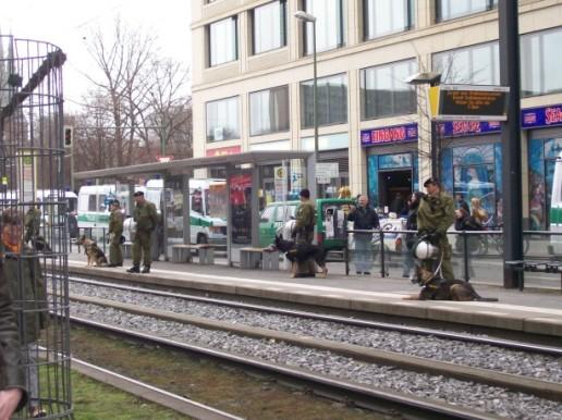 Deutsche Polizeischäferhunde, schon immer beliebt