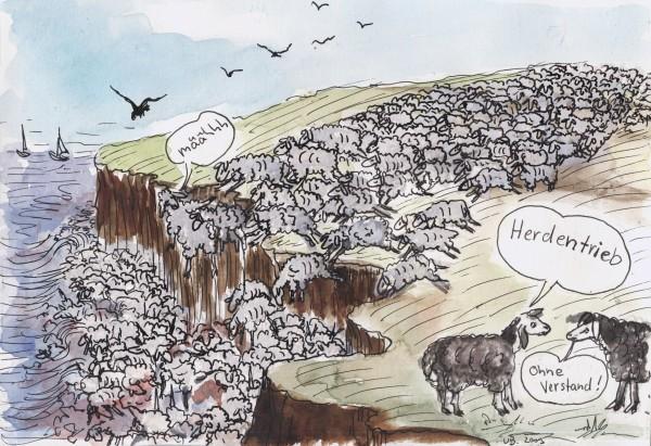 Schafe und Kälber wählen ihre Metzger selber