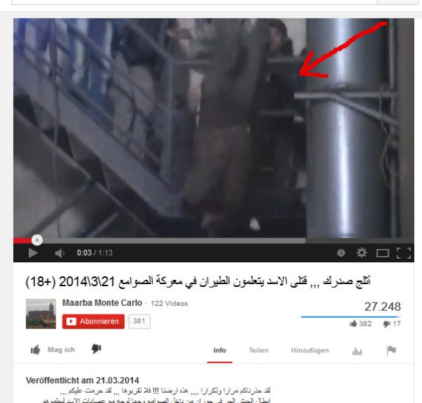 Über das Geländer geworfen und danach ganz laut gejubelt. Warum berichten die UN-Menschenrechtler nicht über die Daara-Kriegsverbrecher