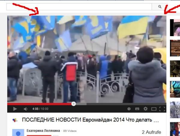 Faschisten-Trupps der Swoboda am Kiewer Maidan