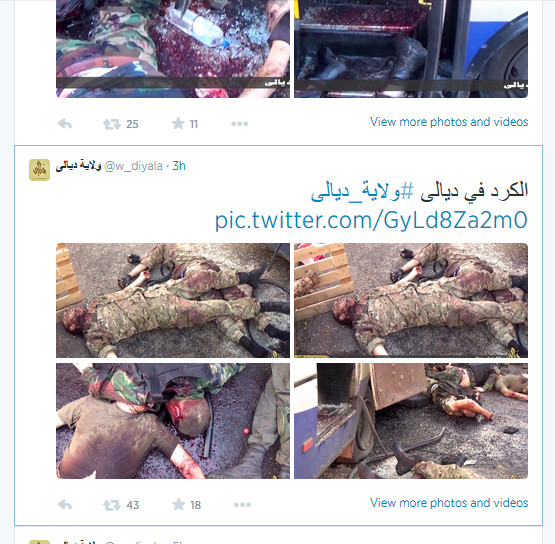Ukraine nicht Irak