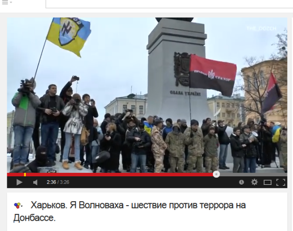 Swoboda Rechter Sektor Bandera-Nazis
