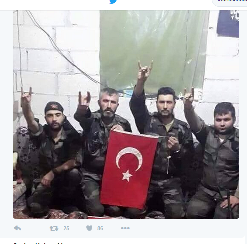 türkische fascos in syrien
