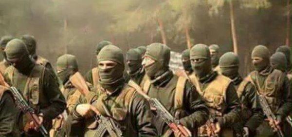 TIP Kaukasus Turkistan Al Kaida Söldner
